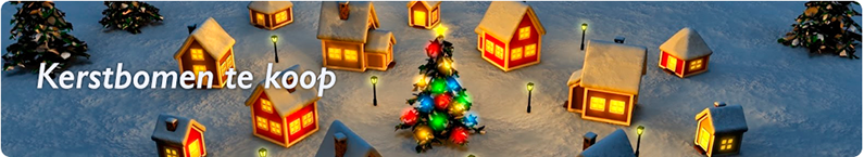 Kerstbomen Hovenier Brink Groenvoorziening Te Beetsterzwaag